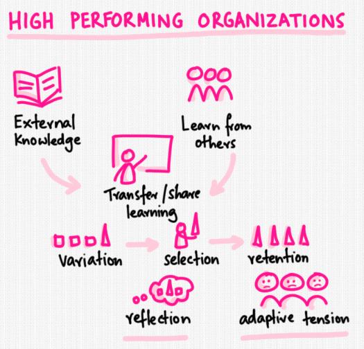 high-performing-organizations.png